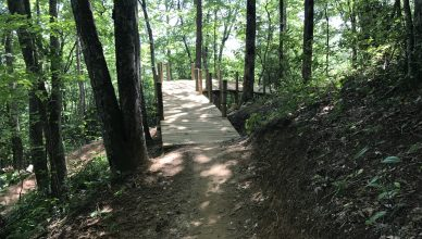 fire mountain bike trails